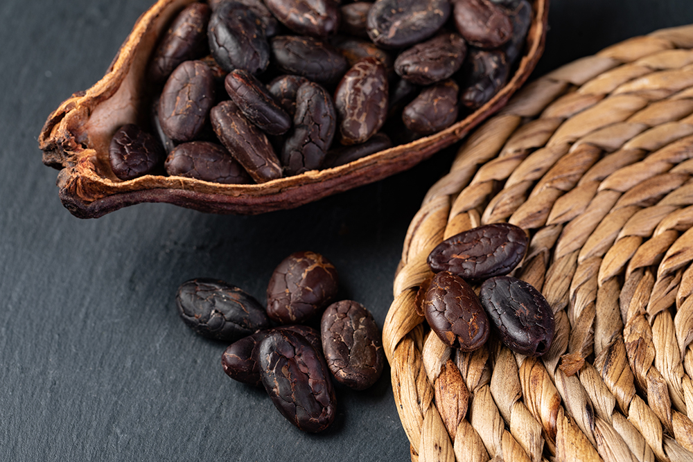 bienfaits infusion cacao