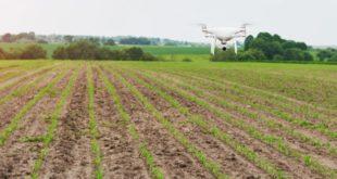 drones en agriculture