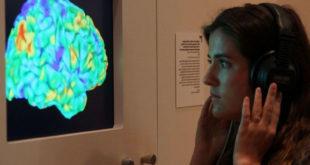 Effets de la musique et cerveau