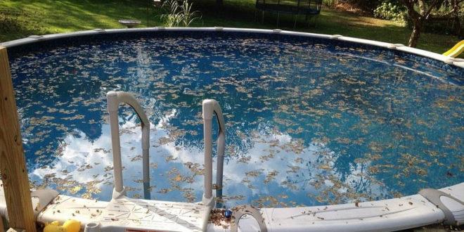 Enlever les feuilles de la piscine