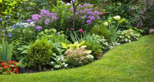 entretien-jardin-avant-hiver