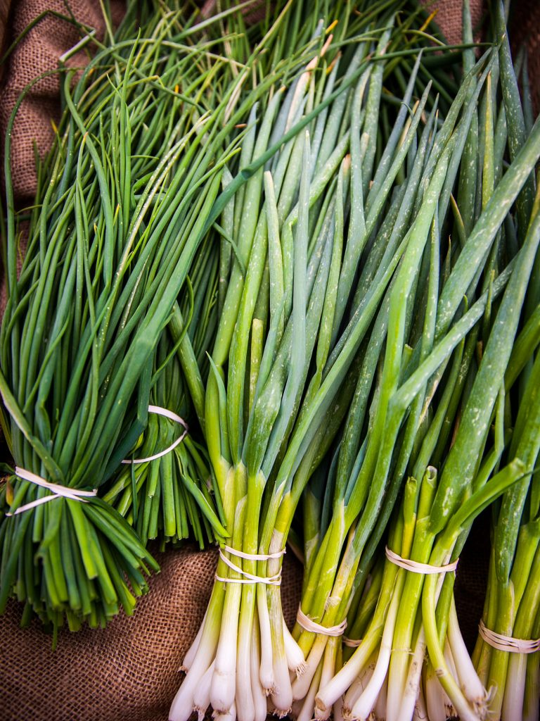 herbes faciles et indispensables à cultiver à la maison