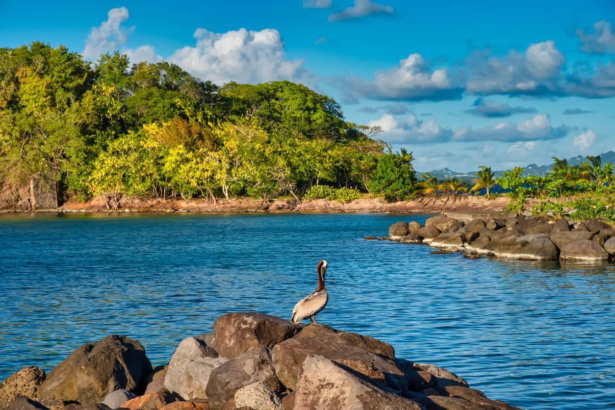 îlets de Martinique