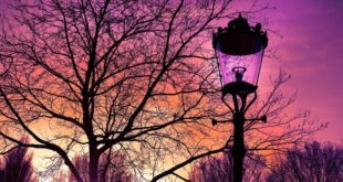 luminaires design extérieur